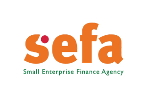 Small Enterprise Finance Agency South Africa